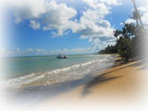 Une plage immense