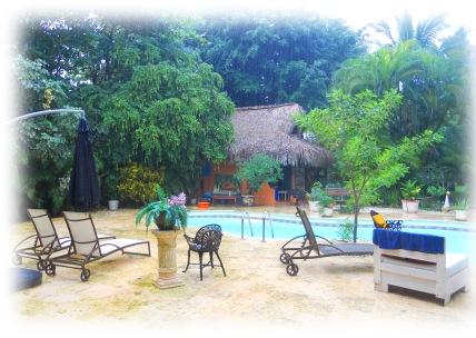 Les arbres sourient de toutes leurs feuilles, des petites grenouilles s'agitent et la piscine se remplit, bonjour madame la pluie.