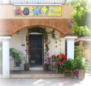 Trop, trop beau. Jordy est juste un magicien et sa boutique de fleurs Taller del Flores, au milieu du village, juste une féérie.